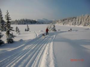 Vinter på Raufjelltjern