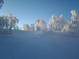 Vinterbilde Vassfaret