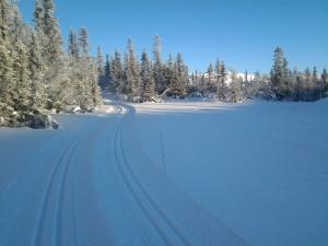 Fine forhold i fjellet. 12.01.2014
