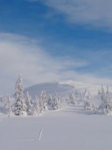 Endelig blå himmel over Veslefjell. 8.2.2014 foto: EBS